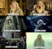 Types of Dumbledore…
