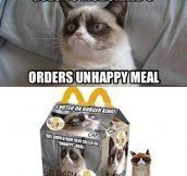 Grumpy Cat at McDonalds…