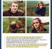 Hermione is the true badass…
