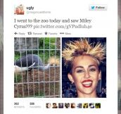 Miley Cyrus, is that you?