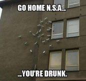 Go home NSA…