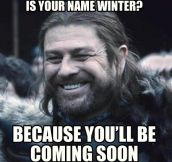 Ned Stark's pick up line…