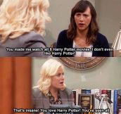 Of course you like Harry Potter…