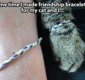 Friendship bracelets…