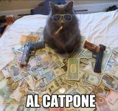 Al Catpone…