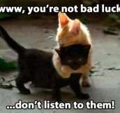 You're not bad luck…
