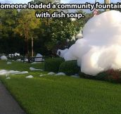 Dish soap disaster…