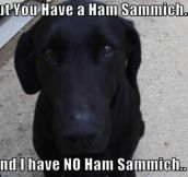 Share the sammich…