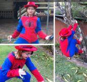 Spider mom…