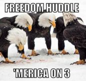 Freedom huddle…