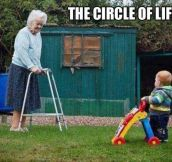 The real circle of life…