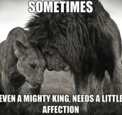 Even mighty kings need it…