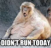 How I feel when I don't exercise…