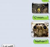 Nathan has really creepy friends…