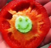 Happy pepper…
