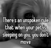 Unspoken rule…