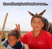 Mother of photobombs…