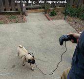 Pug and play…