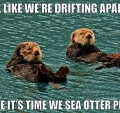 Otter breakup…