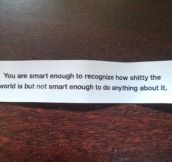 Reality described from a fortune cookie…