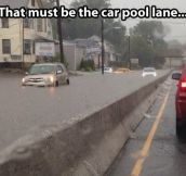 Car pool lane…