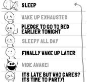 My daily schedule…