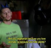 What to ask a vegetarian…