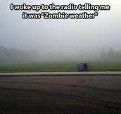 Zombie weather…