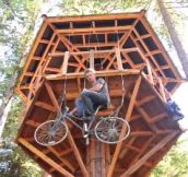 Bicycle Powered Tree House Elevator (8 Pics)