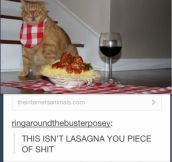 Does it look like lasagna?!
