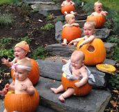 19 Pinterest Fails – Halloween Edition