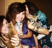 Replacing Booze With Kitties: Here's How to Make Party Photos Family Friendly (15 Pics)