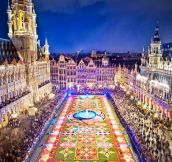 Brussels' amazing flower festival…