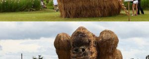 Sand sculptures are so last year, introducing the hay sculptures…