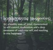 The meaning of Sophrosyne…