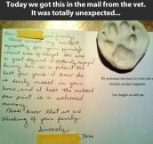 A vet with a big heart…