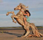 Driftwood horse…