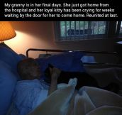 My granny in her final days…