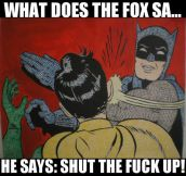 What the fox says…