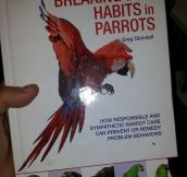 Stop your parrot's bad habits…