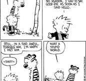 As a kid, I learned a lot about the world from Calvin and Hobbes…