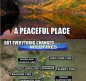 Colorado has changed…