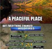 Colorado has changed…