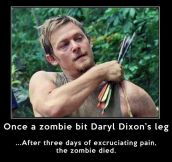 Daryl Dixon vs. any zombie…