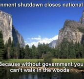 The government and its logic…