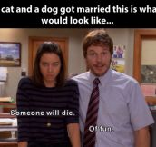 If a cat and a dog ever got married…