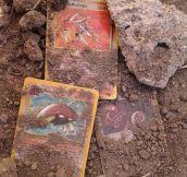 Strange fossils found…