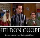 Doppler Sheldon Cooper…