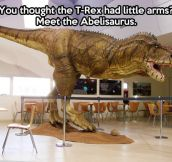 I present you the Abelisaurus…