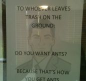 That's how you get ants…